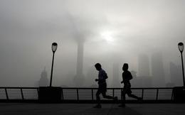 Tìm thấy chất thải từ tính trong não người, ô nhiễm không khí đã lên đến mức không thể tin nổi