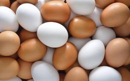 Nếu thích ăn trứng gà, bạn nên loại bỏ 10 điều ngộ nhận này ngay hôm nay