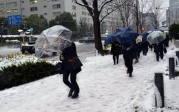 Nhật Bản dày đặc tuyết,hơn 100 người bị thương