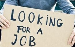 Cứ 100 thanh niên thành thị thì có tới 11 người thất nghiệp
