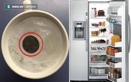 Đặt 1 đồng xu vào tủ lạnh rồi hãy ra khỏi nhà, bạn sẽ nhận được điều bất ngờ khi về đấy!
