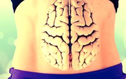 Khoa học đã chứng minh: Bộ não thứ 2 của con người là có thật và nó nằm dưới bụng!