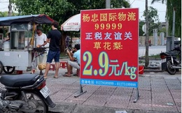 """Khu """"phố Tàu"""" sát nách Thủ đô: Chủ tịch tỉnh Bắc Ninh hứa chấn chỉnh"""