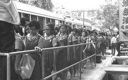 Singapore mở chiến dịch buộc xếp hàngnổi tiếngnăm 1970