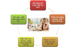 Khắc phục toàn diện  tình trạng trẻ biếng ăn cùng chuyên gia