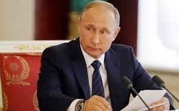 Ông Putin cân nhắc việc tái tranh cử Tổng thống năm 2018