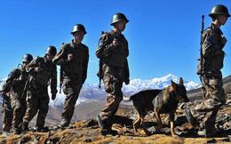 """Vì sao đang """"cứng giọng"""", Trung Quốc lại bất ngờ chìa cành ô liu với Ấn Độ?"""