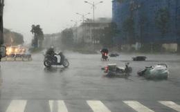 Tin mới nhất về cơn bão số 1
