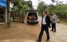 Bị phát hiện dùng xe công chở gỗ lậu, giám đốc TT y tế bố trí nhân viên nhận tội thay