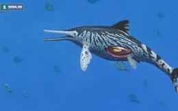 Khai quật thủy quái khổng lồ kỷ Jura 150 triệu năm tuổi ở Ấn Độ