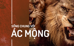 Bầy sư tử cuồng dại, giết chết 1.500 người: Vụ động vật thảm sát nhiều người nhất lịch sử