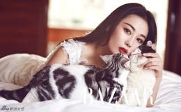 Trương Hinh Dư: Từ hot girl nóng bỏng cho tới ngôi sao bị ghét nhất showbiz