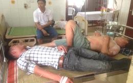 15 người đi đến cổng trường thì bị ong tấn công, có nạn nhân bị đốt tới cả trăm vết