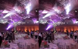 Toàn cảnh đám cưới Đặng Thu Thảo: Không gian cưới lộng lẫy như truyện cổ tích