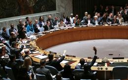 Ukraine kêu gọi tước quyền phủ quyết của Nga tại Hội đồng bảo an