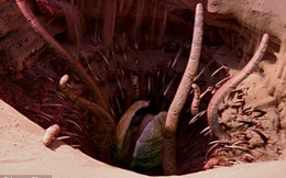 Giới khoa học trăn trở ngày đêm vì hố sâu kỳ lạ trên sao Hỏa