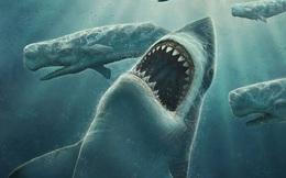 """Không phải siêu cá mập Megalodon, đây mới là kẻ đầu tiên """"thống trị"""" đại dương"""