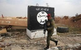 Giải phóng Mosul bước vào giai đoạn cuối: IS vẫn còn cơ hội tồn tại dai dẳng