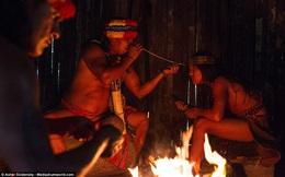 Hé lộ những bí ẩn của nghề pháp sư trong rừng rậm Amazon