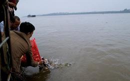 Đệ tử Thượng tọa Thích Chân Quang: Cá chim trắng thả phóng sinh là loại không gây hại