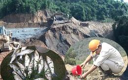 Lấy mẫu bùn, nước để kiểm tra sau vụ vỡ đập chứa quặng thải làm cá chết