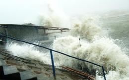 Tin mới nhất về bão số 4 sẽ đổ bộ vào nước ta trong hôm nay