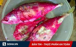 Thủ phạm nguy hiểm làm thịt, cá đổi màu: Gây viêm phổi, nhiễm trùng huyết, viêm màng não