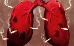 10 lầm tưởng về bệnh ung thư phổi: Đây có thể là nguyên nhân đẩy bạn gần hơn với cái chết