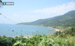 Đà Nẵng rà soát lại quy hoạch bán đảo Sơn Trà theo chỉ đạo của Phó Thủ tướng