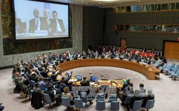 HĐBA LHQ thông qua nghị quyết về thỏa thuận ngừng bắn Syria