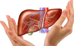Bác sĩ Việt ở Mỹ: 4 truyền thuyết về giải độc gan và sự thật phũ phàng