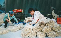 Bỏng gậy - Món quà quê dân dã của người Việt lại gây thích thú trên blog ẩm thực nước ngoài