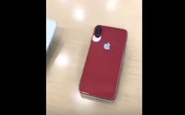Lộ ảnh thực tế iPhone X với 4 màu trước giờ G