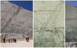 """Sự thật về """"bức tường khổng lồ"""" lưu trữ 5.000 dấu chân khủng long lớn nhất thế giới"""
