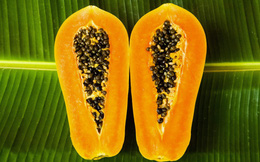 """Thế giới tôn vinh đây là """"chúa tể"""" của các loại quả: Việt Nam để rụng đầy vườn"""