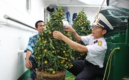 Xuất phát từ quân cảng Cam Ranh: Mang Tết đến với quân, dân huyện đảo Trường Sa