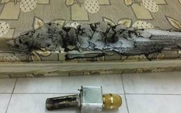 Mua micro hát karaoke giá 650.000 đồng, khi sạc phát nổ suýt cháy cả nhà