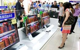 Trần Anh: Không có chuyện mỗi năm mất vài tỷ đồng vì… chuột