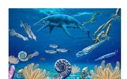 Bằng chứng sự sống hồi phục cực nhanh sau thời kỳ đại tuyệt chủng