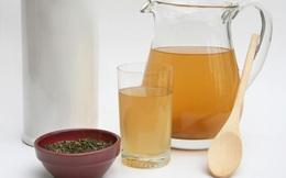 Kombucha: Loại trà 'bất tử' được chuyên gia khuyên dùng mỗi ngày