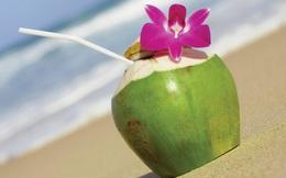 Giải độc, tan sỏi thận,  làm sạch bàng quang: Đừng tìm kiếm đâu xa, chỉ cần uống nước dừa