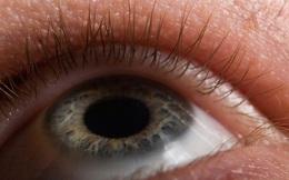 Với cơ chế siêu đơn giản, giờ đây con ngươi mắt nhân tạo đã có thể giãn nở tự động y hệt con người