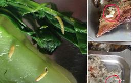 Hãi hùng với bữa cơm công ty: Rau sâu, cá giòi