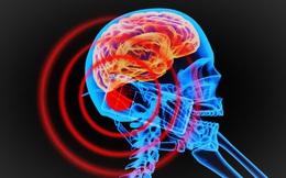Hơn 200 nhà khoa học kêu gọi WHO tăng cảnh báo về di động: Vì sao không nên coi thường?