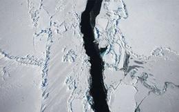 5 kỹ năng quan trọng đương đầu với biến đổi khí hậu