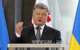Ukraine ra điều kiện cho việc triển khai phái bộ của LHQ ở miền Đông