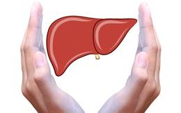 Những loại thực phẩm tốt cho gan: Bạn nên đưa vào thực đơn hàng ngày càng sớm càng tốt!