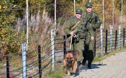 Vượt biên sang Ukraine bất thành, phần tử cực đoan nổ súng giết chết lính biên phòng Nga