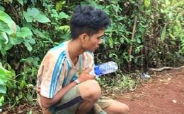 Bắt đối tượng cưa hạ cây thủy tùng 500 năm tuổi ở Đắk Lắk