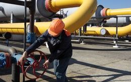 Phó Thủ tướng Ukraine nêu điều kiện quay lại mua khí đốt từ Nga